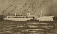 [Postcard of MV <i>Fairsea</i>]