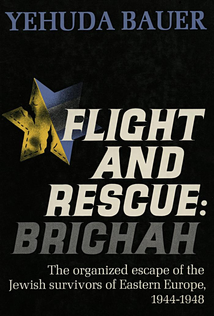 Flight and rescue : Brichah