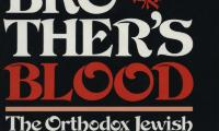 Thy brother's blood : the Orthodox Jewish response during the Holocaust = [Ḳol deme aḥikha tsoʻaḳim elai]