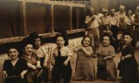 Giants : the dwarfs of Auschwitz : the extraordinary story of the Lilliput Troupe