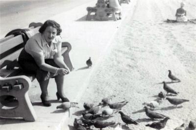 [Photograph of Chaje Gottfried feeding pigeons]