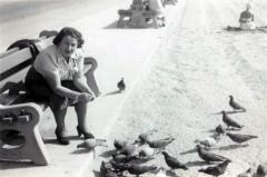 [Photograph of Chaje Gottfried feeding pigeons]
