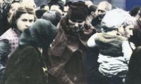 Auschwitz : a doctor's story
