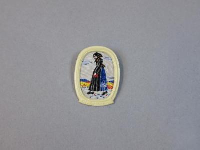 Winterhilfswerk Neiderdonau region folk costume pin
