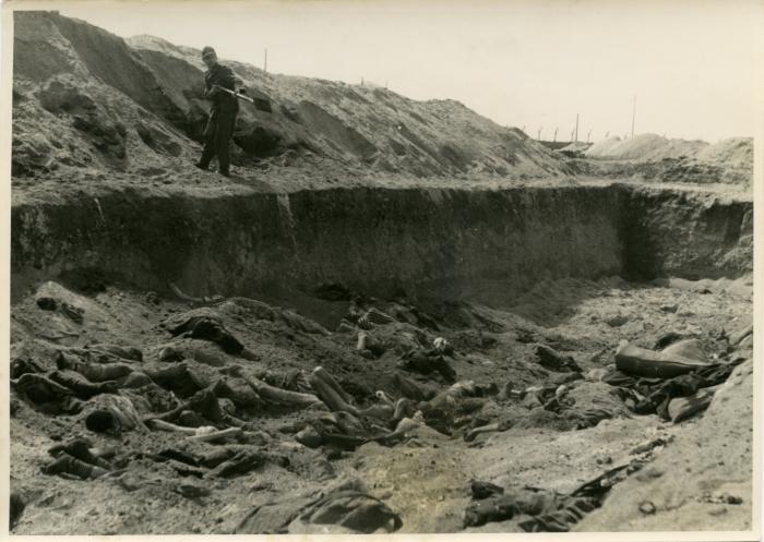 Belsen pit
