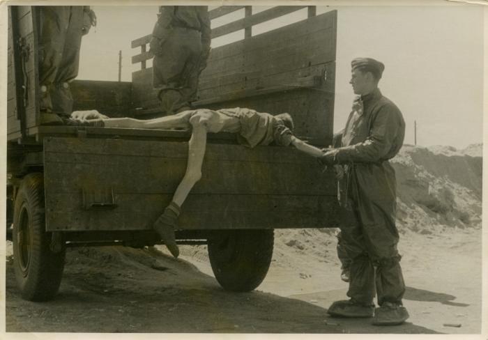 Belsen camp