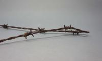 Barbed wire from Auschwitz